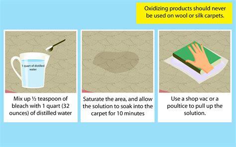ways  remove pet urine  carpet wikihow