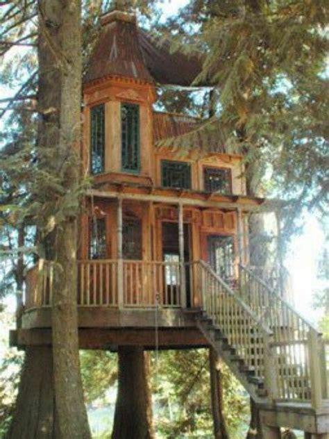 tree house homes victorian tree house tree house pinterest