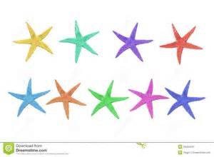 starfish colors nine colorful starfish on a white background royalty free