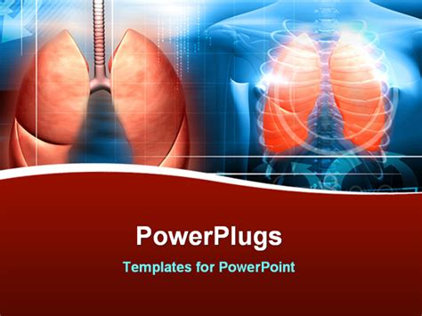 powerpoint themes lungs digital illustration of a human body and lungs in color