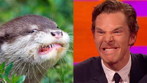 Cumberbatch Otter Meme - benedict cumberbatch s resemblance to an otter the