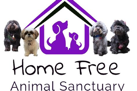 fundraiser by kathy brown leonard home free animal
