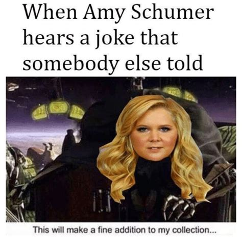 Amy Schumer Meme - 25 best memes about this will make a fine addition to my