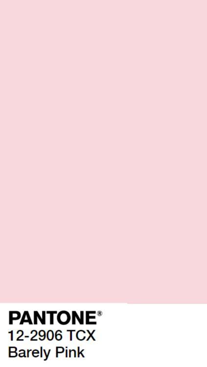 pink pantone pink pantone tumblr