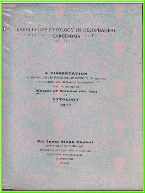 literature based dissertation literature based dissertation optoin