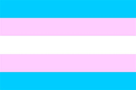 trans flag colors trans mending versus transphobic amendments ccgsd