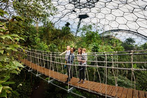 Interior Design Furniture by Eden Project Plants Roots Down Under Green Magazinegreen