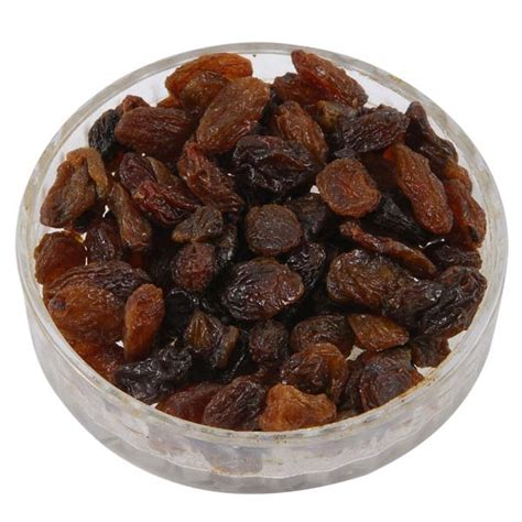 are raisins bad for dogs pet safe raisins raisins cats dogs
