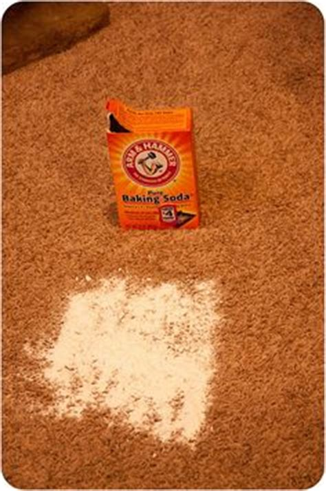 how to get hair color out of carpet dye carpet on remove stains rit dye