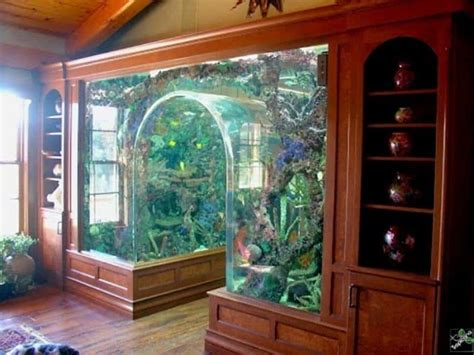 arch design inside home interior designs home aquarium ideas arch tank home