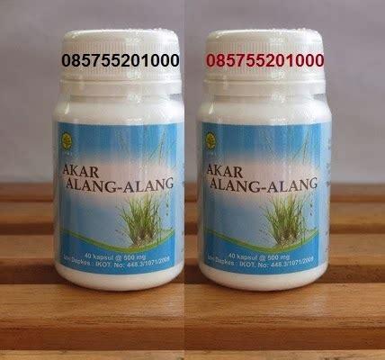 Herbal Radang Ginjal Akar Alang Alang Segar akar alang alang obat herbal sakit pinggang surabaya 085755201000 jual akar alang alang obat