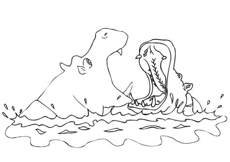 free coloring pages hippo free coloring pages of hippo face