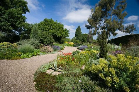 how to recreate beth chatto s gravel garden in pictures life and style the guardian