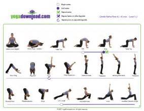 Aerobics amp yoga class rise and shine