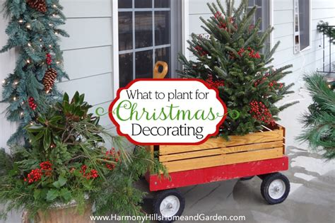 Home And Garden Christmas Decorating Ideas by Home And Garden Christmas Decorations 28 Images
