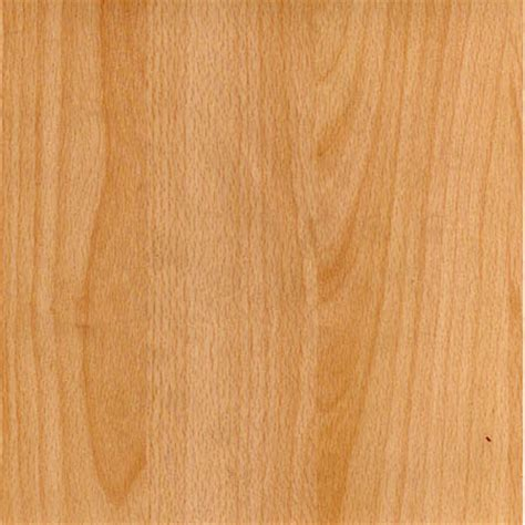 Replacement Kitchen Cabinet Doors Cost by Beech Kitchen Door Finish Any Size Made To Measure