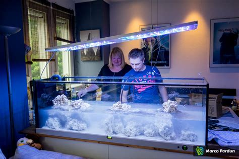 120 liter meerwasseraquarium 120 liter meerwasseraquarium verkaufe meerwasser aquarium