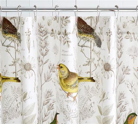 bird print shower curtain meadowlark print organic shower curtain pottery barn