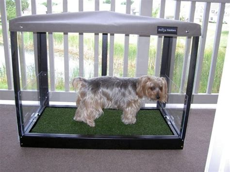 dog balcony bathroom indoor dog toilets homedesignfordogs
