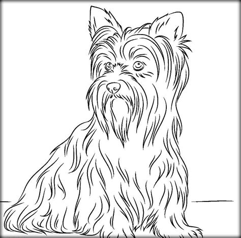 real dog coloring pages related keywords real dog