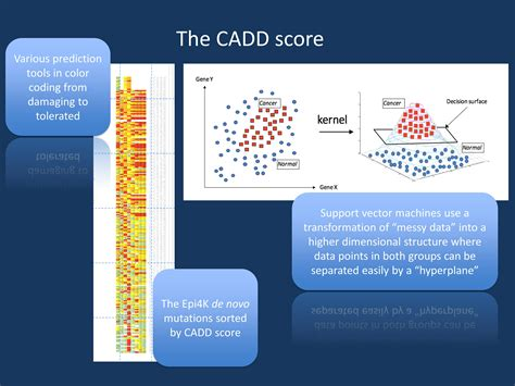Get Your Kit And Score A New From by Here Is Why Cadd Has Become The Preferred Variant