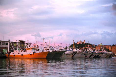 capitaneria di porto civitanova marche pesca protesta vongolare civitanova in porto ancona