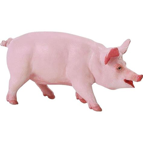 Animal Farm Pig animal science series unit study ideas and freebies for