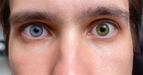 eye color test eye color test quiz quizony
