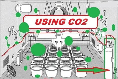 co2 grow room creating co2 for your indoor grow room green cultured