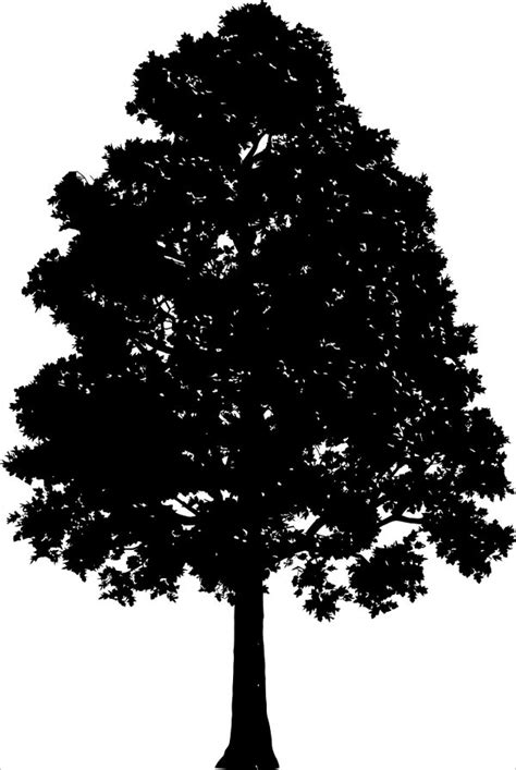 21+ Tree Silhouettes - Free PSD, Vector AI, EPS Format
