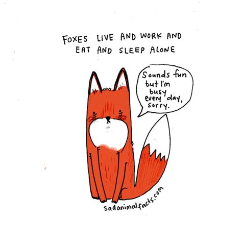 sad animal facts 0752265954 sad animal facts illustrations by brooke barker