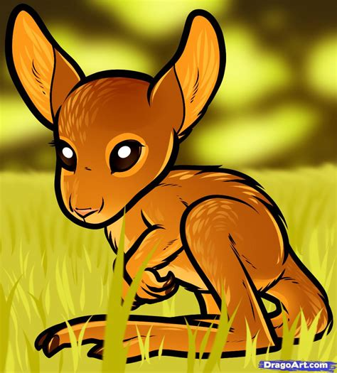 how to a baby how to draw a baby kangaroo baby kangaroo step by step desert animals animals