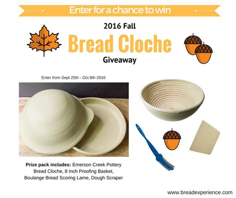Bread Giveaway - 2016 fall bread cloche giveaway bread experience