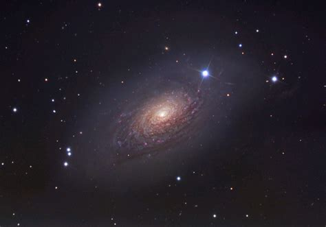 sunflower galaxy digital photograph of m63 the sunflower galaxy