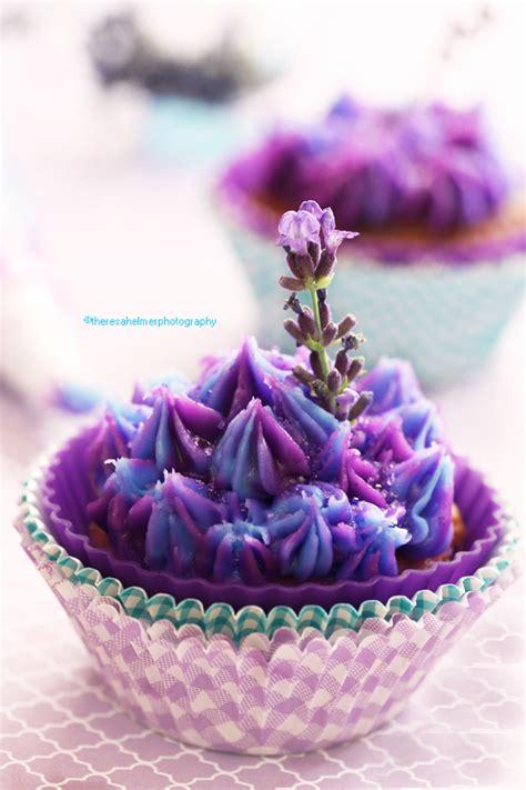 lavender honey cupcake  theresahelmer  deviantart