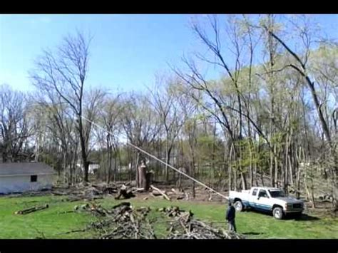 tree falls on house tree falls on house viral viral videos