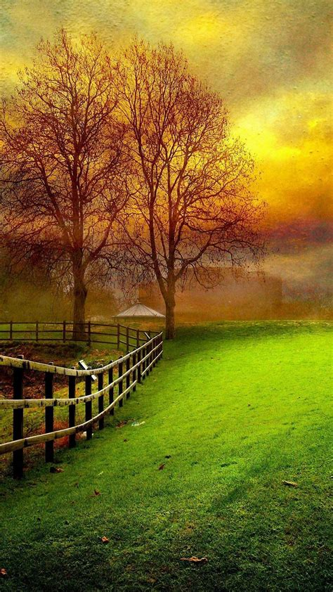 beautiful nature wallpaper  mobile  nature
