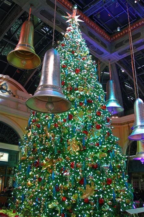 bellagio conservatory delivers another dazzling take on
