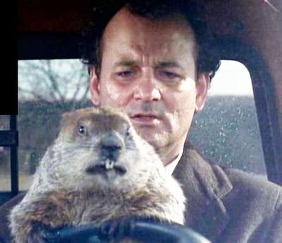 groundhog day driving i am groundhog s day bill murray visit me if you