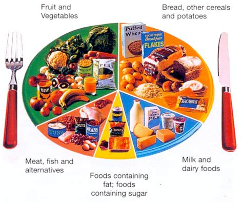 healthy diet diagram height weight calorie charts