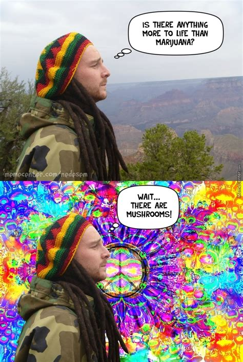 Psychedelic Meme - mushrooms by nedesem meme center