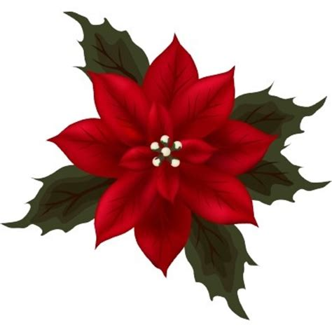 poinsettia exle design iii holiday card ideas