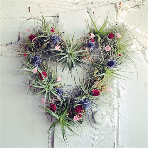 robincharlotte nature fashion art new in the studio air plant wreaths