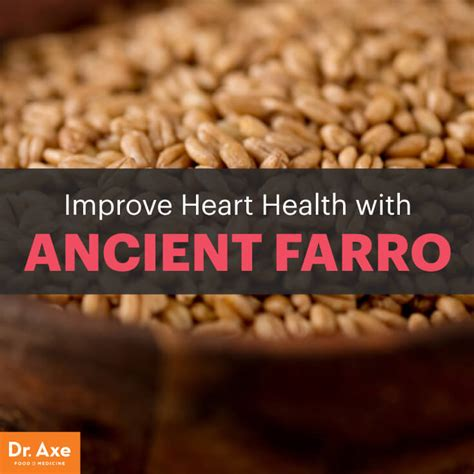 whole grains dr axe 6 farro nutrition benefits that may you dr axe