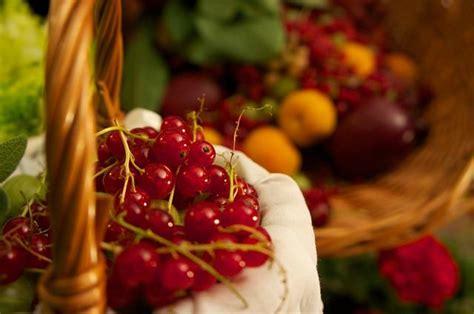 cistite alimentazione cistite ricorrente prevenirla con la dieta giusta
