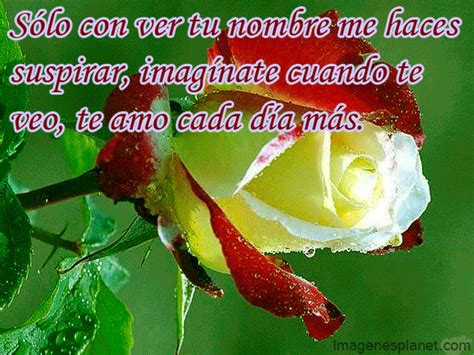 imagenes de rosas romanticas con frases imagenes de frases con flores imagui
