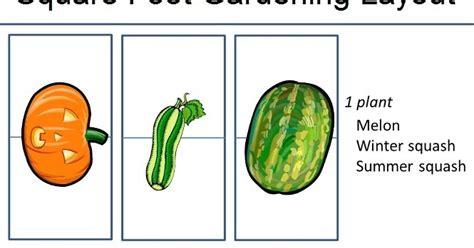 gardening layout square foot gardening layout 101 gardening