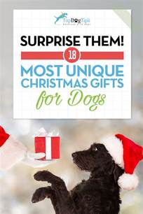 17 best christmas gift ideas for dogs that ll surprise you