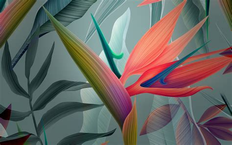 abstract flowers wallpapers hd wallpapers id