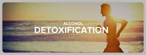 How Do You Help An Alcoholic Detox by The 5 Steps Of Detox And The Withdrawal Symptoms